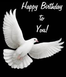 happy_birthday_white_dove_card-r68bacc24fa654c278492213e68985bde_em0c6_307.jpg