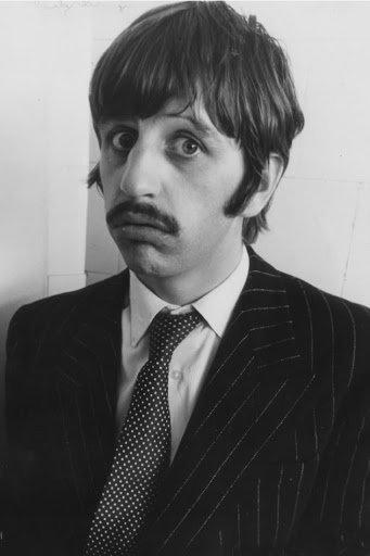 Ringo.jpg.4e0d7f147bf0094398f3433c19485326.jpg